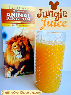 Disney's Jungle Juice {Copycat Recipe}