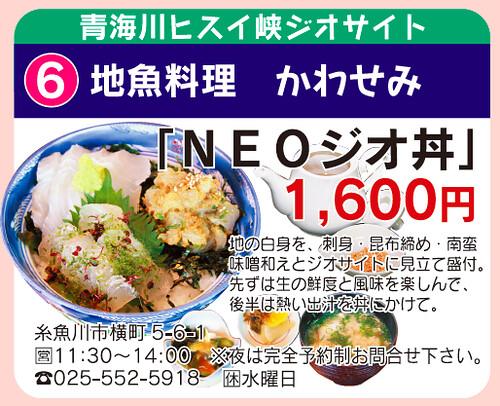 NEOジオ丼