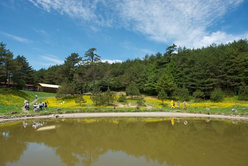 福壽山農場露營區2