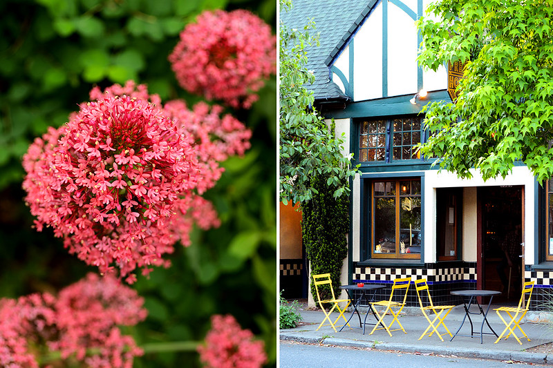 Pink Bloom and Outdoor Seating