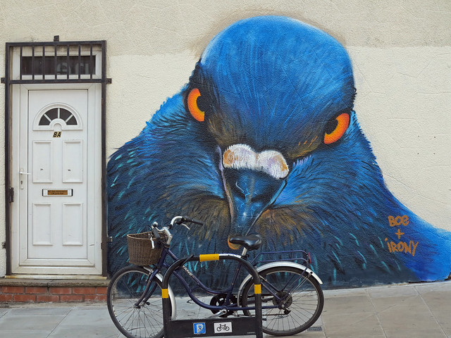 Steal This Bike & I'll Peck Your Eyes Out