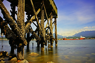 New Brighton Beach - Vancouver