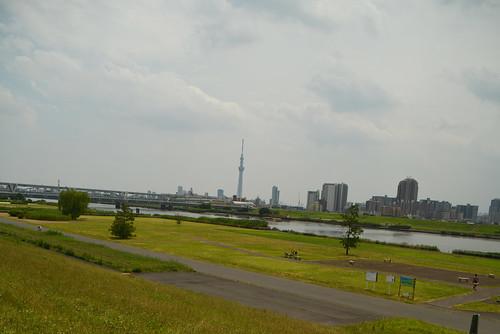 DSC_8713