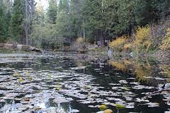 Quilt Retreat Fall 2013-199