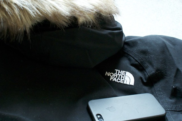 The North Face McMurdo Parka ND91310-12