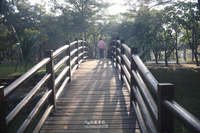 台南私藏景點--巴克禮落羽松 (5)
