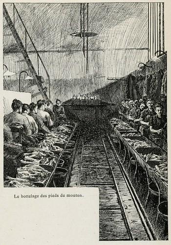 Paris 1893- abattoirs-marché s aux  bestiaux- ill s