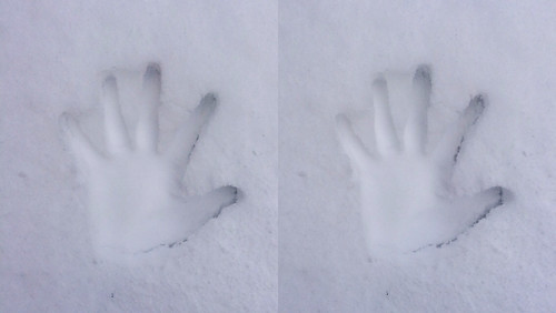 [Daily Cha cha S3-D] Handprint in the snow. Cross eye