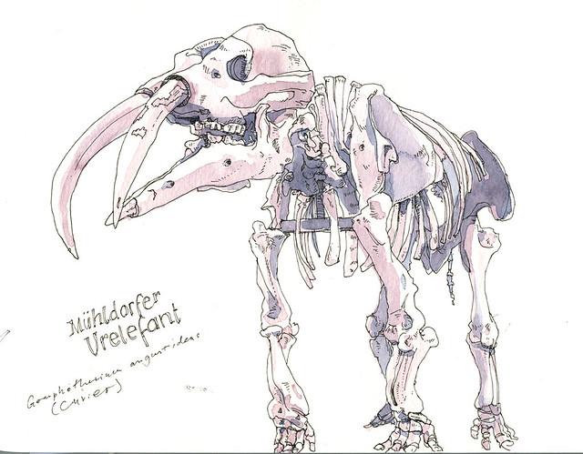 Frankfurter Urelefant