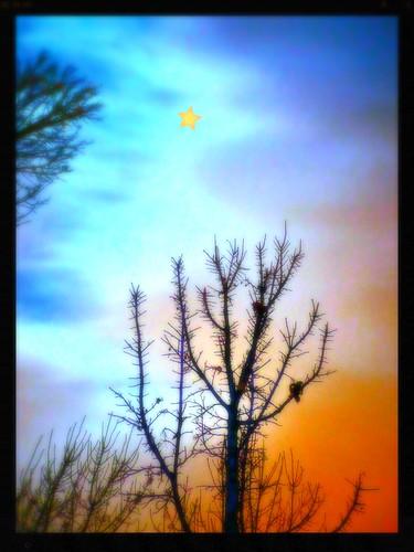 germany deutschland flickr experiment tuebingen tübingen damncool tubingen württemberg badenwuerttemberg tubinga eagle1effi betterthangood goldstaraward 3wordcomments yourbestoftoday dibenga stadttübingen dreiwörter beautifulcityoftubingengermany beautifulcityoftübingengermany dibengâ tubingue