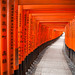 Kyoto, Fushimi Inari Taisha by -sanch-
