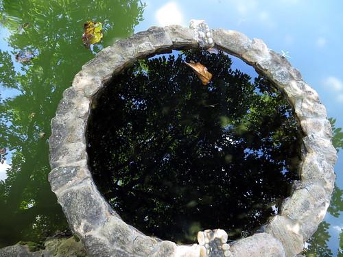 Reflexos da água
