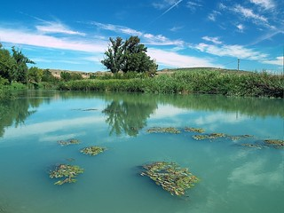 La Vega del rio Tajo