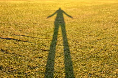 shadow grass nikon shadows sigma goldenhour sigmalens sigma1750 tallshadows shadowsofme sigma1750f28 nikond7100