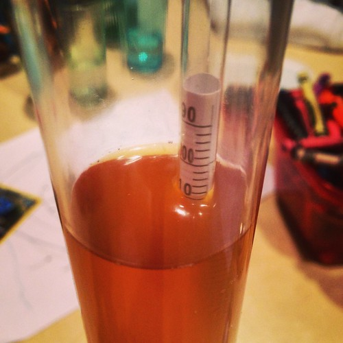 Little Ponder's provisional final gravity. A little more science to do re: temperature etc. #homebrewing