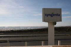 Syngenta - Convegno Portinnesti Pomodoro