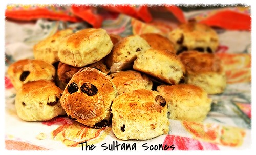 IMG 5415 Sultana Scones