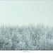 In de sneeuw by nandOOnline
