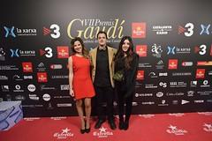 Catifa vermella VII Premis Gaudí (52)