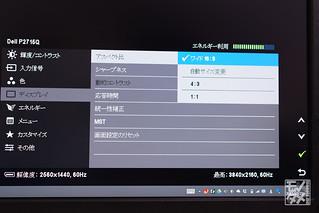DSC05769.jpg