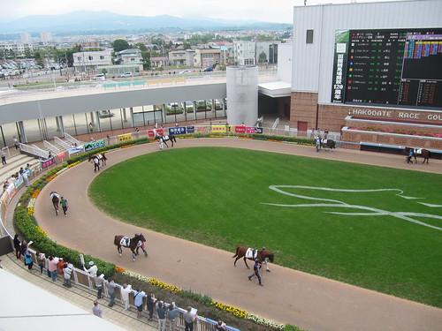函館競馬場のダッグアウトパドックへの行き方