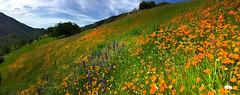 #mypubliclandsroadtrip 2016: Extreme Public Lands, California Wild and Scenic Rivers