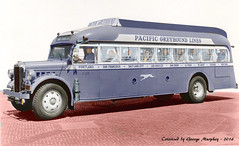 Greyhound Bus Colorized