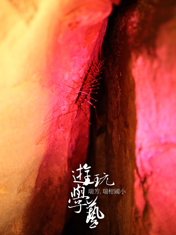 瑞柑國小_06