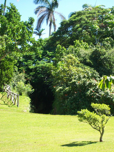 The Bermuda Arboretum, a national park, covers 22 acres.