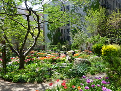 West Side Community Garden, New York City
