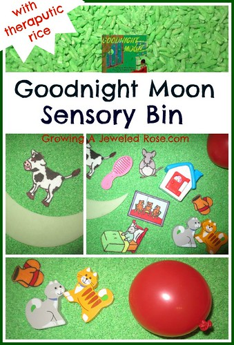 Goodnight Moon Sensory Bin (Photo from Growing a Jeweled Rose)