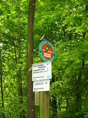 Büggie? - Photo of Schœnbourg