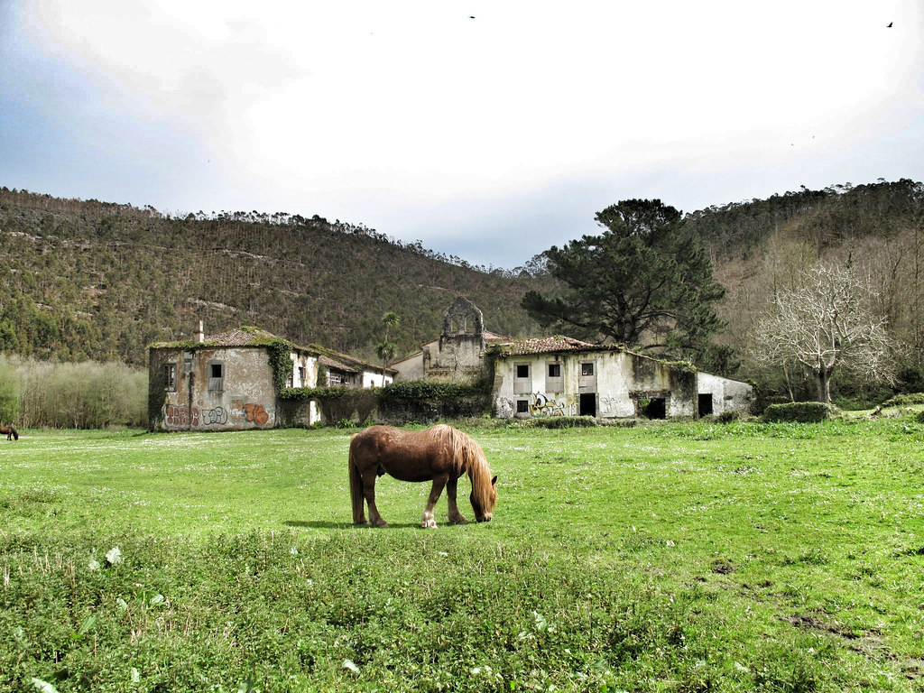 3. construcciones peregrino_San Antolín de Bedón