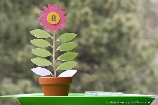 Leaves on the Flower Stem Counting Activity
