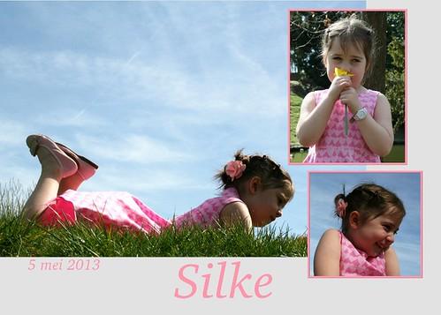 Silke's bedankt kaartje