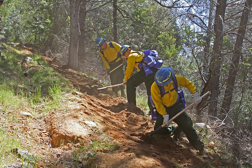 Firefighter trainees dig out a fire line during the Forest Service and California Conservation Corps joint training session.  (U.S. Forest Service photo)