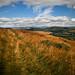Drovers Road, Hill of Alyth by S i m o n . M a y s o n