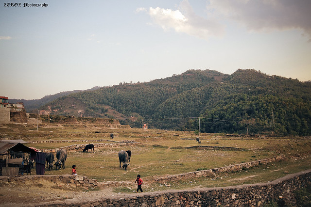 尼泊爾•印象0022-4-3.jpg