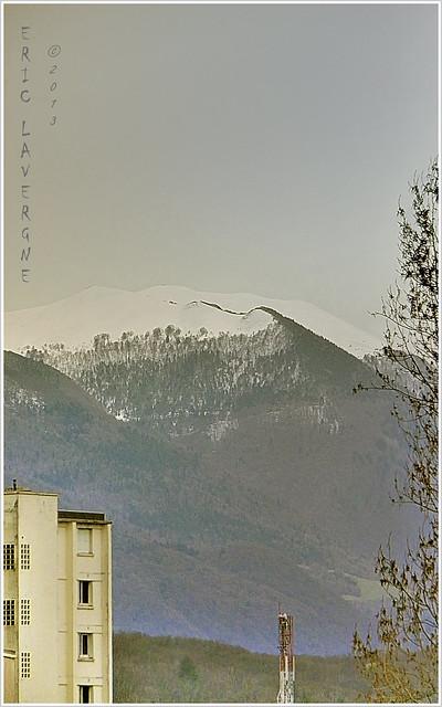 FM-13-05.002-cadre-Eric Lavergne-copyright
