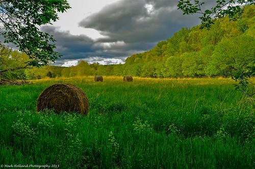 rural landscape farm country hay