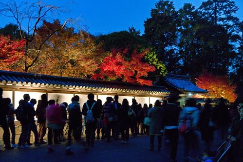 【写真】紅葉 : 南禅寺