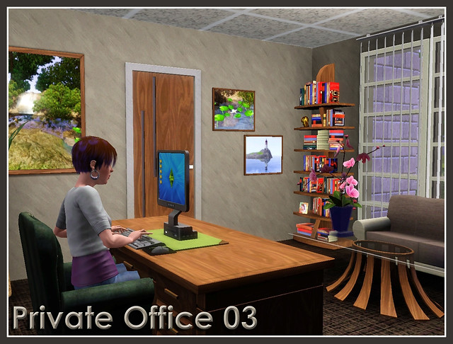 Private Office 03
