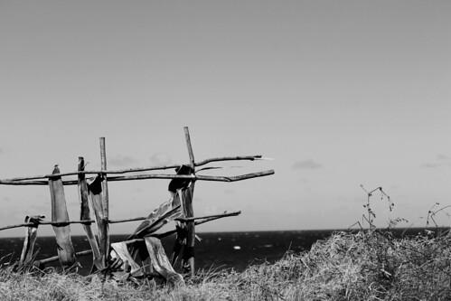 wood sky blackandwhite beach nature grass fence seaside view wind