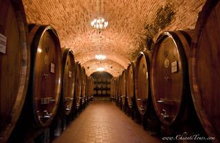 Vignamaggio winery (Chianti, Tuscany)