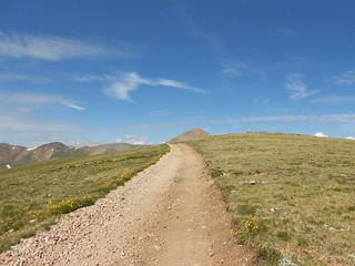 Road Leading to Cronin Peak