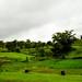 Varandha_Ghat-8