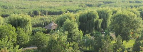 Delta Dunarii - Puflene Resort v03