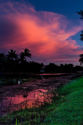 trees sunset sky lake water clouds landscape canal unitedstates florida dusk palmtrees southflorida coralsprings 6d eos6d ef24105f4l