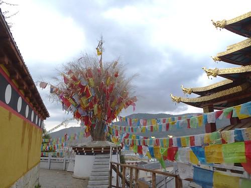 Yunnan13-Shangri La (19)