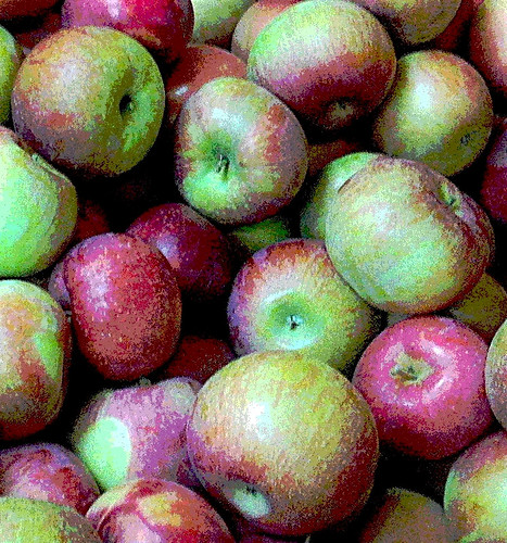 More Apples from Russell's (Posterized) by randubnick